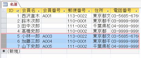 Excelからコピーしたデータが追加される