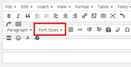 フォントサイズ設定メニューが追加される