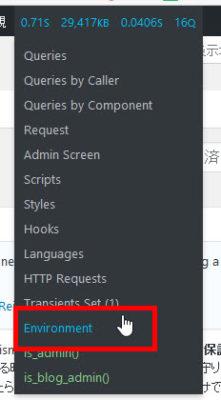 「Environment」をクリック