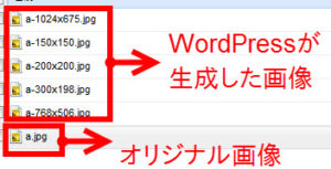 wp-content/uploadsフォルダ(画像が含まれる)