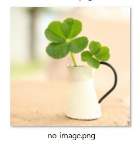 取り替える画像(no-image.png)