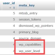 phpMyAdminを使ってWordPressの編集者を管理者に変更する